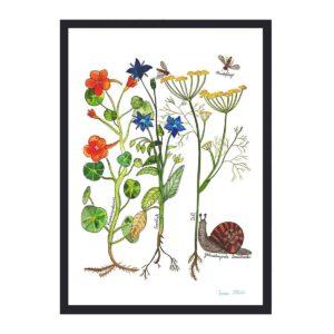 Frau Ottilie - Print Garten