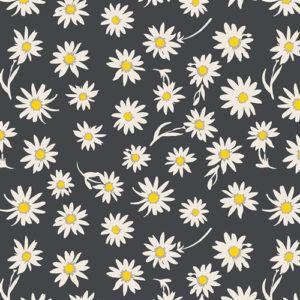 Art Gallery Wonderful Things Flower Glory Evening