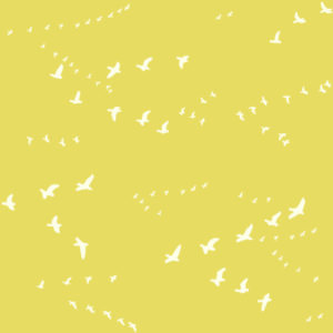 Birch Fabrics - Bear Camp - Flight Sun