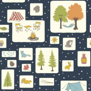 Birch Fabrics - Camp Sur 3 - Campout Blocks
