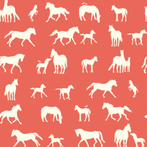 Birch Fabrics - Farm Fresh - The Champion Coral