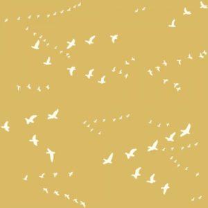 Bio-Baumwolle Birch Fabrics Birch Basics - Dot in Golden