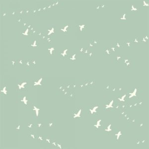Bio-Baumwolle Birch Fabrics Birch Basics - Flight in mint