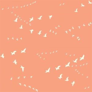 Bio-Baumwolle Birch Fabrics Birch Basics - Flight in peachy