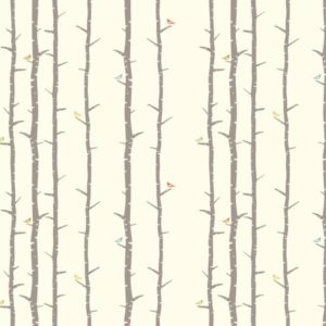 Bio-Baumwolle Birch Fabrics Birch Basics - Perch
