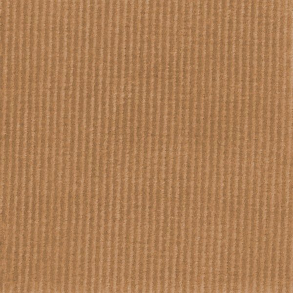 C.Pauli - Cord tan