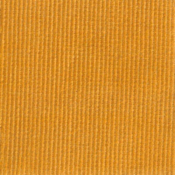 C.Pauli - Cord tawny Olive