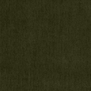 C.Pauli - Cord ivy green